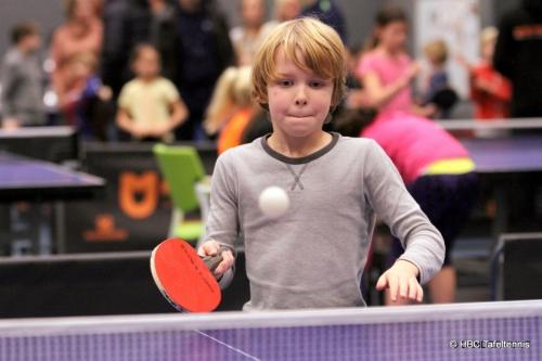 Ping-Pong Stars 2017